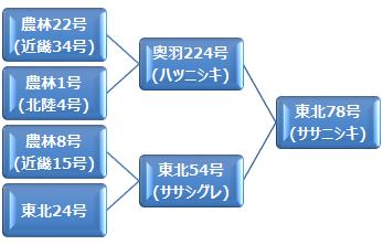 kei_sasanishiki