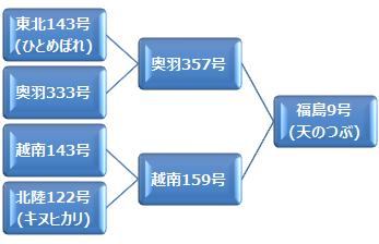 kei_tennotsubu