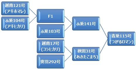 kei_tsugaruroman