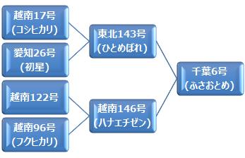 kei_fusaotome