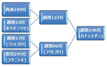 kei_hanaechizen