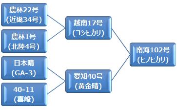 kei_hinohikari