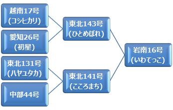 kei_iwatekko