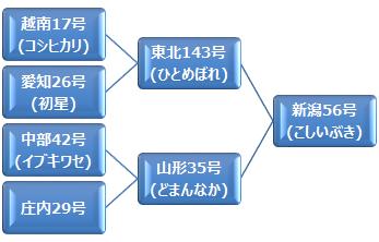 kei_koshiibuki