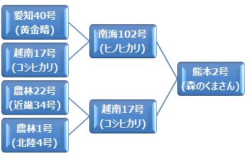 kei_morinokumasan