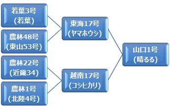 kei_haruru
