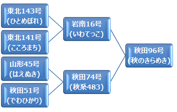 kei_akinokirameki