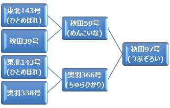 kei_tsubuzoroi